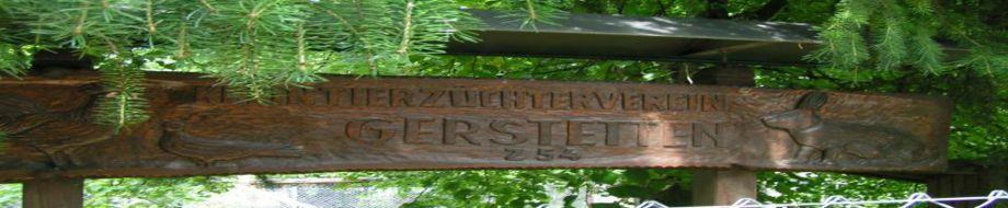 Z 54 Gerstetten